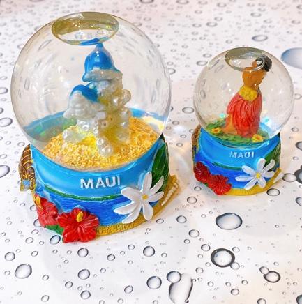 ハワイアンスノードーム